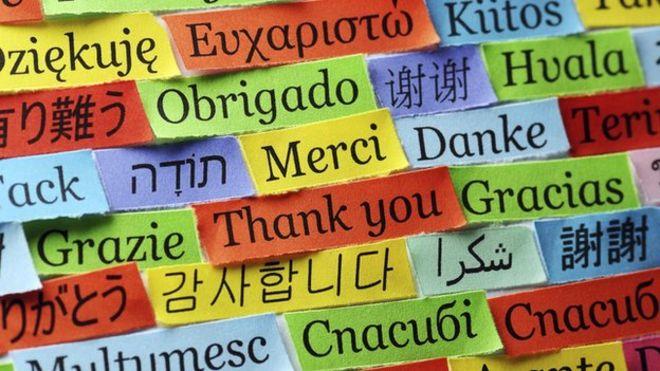 Продължават курсовете по езици